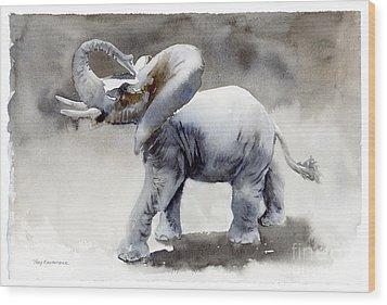 Elephant Light Study  Wood Print by Amy Kirkpatrick