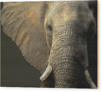 Elephant Portrait Wood Print by Kathie Miller