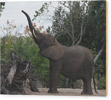 Wood Print featuring the photograph Elephant Time by Vadim Levin