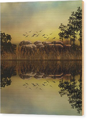 Elephants At Sunset Wood Print