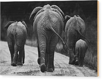 Elephants In Black And White Wood Print by Johan Elzenga