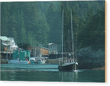 Elfin Cove Alaska Wood Print by Harry Spitz