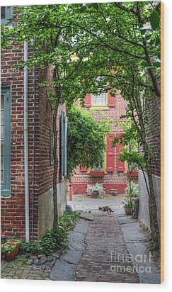 Calico Alley  Wood Print by David Zanzinger