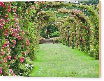 Elizabeth Park Arch Wood Print