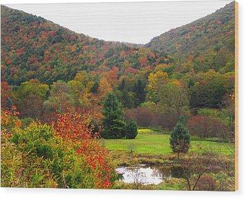 Elk Country Pennsylvania Wood Print