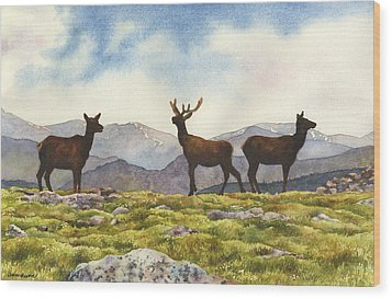 Wood Print featuring the painting Elk In The Evening by Anne Gifford
