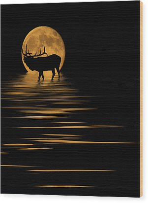 Elk In The Moonlight Wood Print