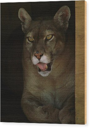 Elmira's Panther Wood Print by Kimberly Camacho