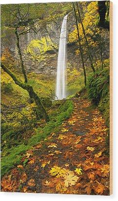 Elowah Autumn Trail Wood Print by Mike  Dawson
