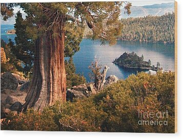 Emerald Bay Overlook Wood Print by Norman  Andrus