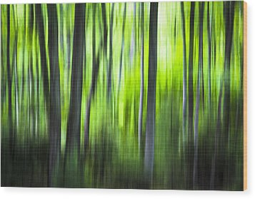 Green Forest - North Carolina Wood Print