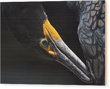 Wood Print featuring the photograph Emerald Eyes by Lorenzo Cassina