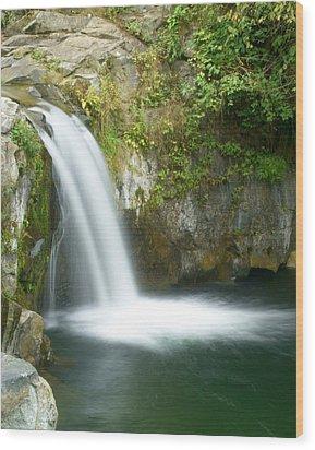 Emerald Falls Wood Print by Marty Koch