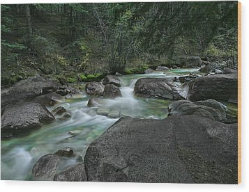 Wood Print featuring the photograph Emerald Forest by Tim Reaves