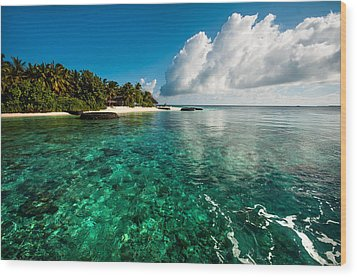 Emerald Purity. Maldives Wood Print by Jenny Rainbow
