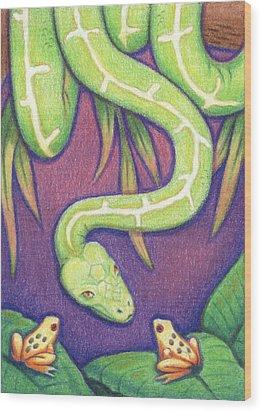 Emerald Tree Boa Wood Print by Amy S Turner