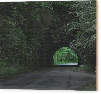Emerald Tunnel Wood Print