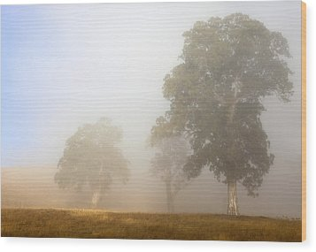 Emerging From The Fog Wood Print by Mike  Dawson