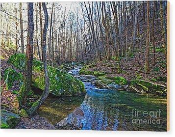 Emory Gap Branch Wood Print