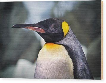Emperor Penguin Wood Print