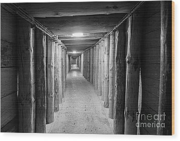 Wood Print featuring the photograph Empty Corridor by Juli Scalzi