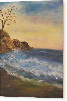 Empty Shore Wood Print by Shiana Canatella