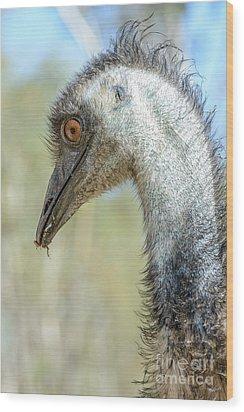 Emu 3 Wood Print
