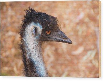 Emu Profile Wood Print by Mike  Dawson