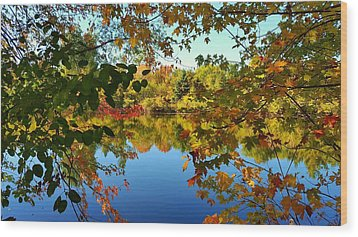 Wood Print featuring the photograph Enchanted Fall by Valentino Visentini