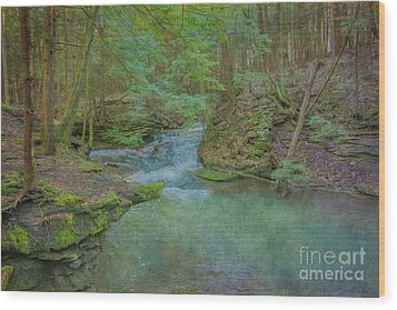 Wood Print featuring the digital art Enchanted Forest One by Randy Steele