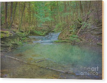 Wood Print featuring the digital art Enchanted Forest Two by Randy Steele