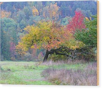 Enchanted Park Wood Print