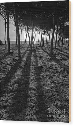 Enchanted Sunset In Monochrome Wood Print by Angelo DeVal