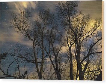 Wood Print featuring the photograph Enchanting Night by James BO Insogna