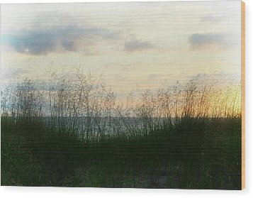 Wood Print featuring the photograph End Of Day At Pentwater by Michelle Calkins