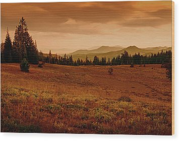 Wood Print featuring the photograph End Of Day by Frank Wilson