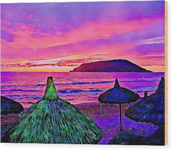End Of The Beach Day In Mazatlan Wood Print