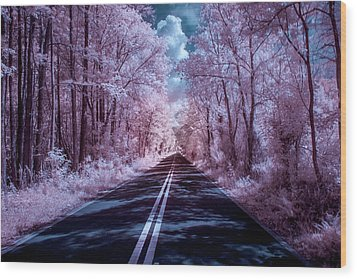 Wood Print featuring the photograph End Of The Road by Louis Ferreira