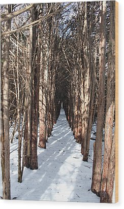 End Of The Trail Wood Print by Jeff Porter