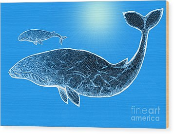Endangered Gray Whales Wood Print by Nick Gustafson