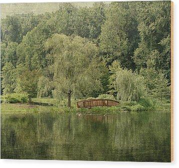 Endless Beauty Wood Print by Kim Hojnacki