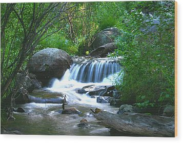 Wood Print featuring the photograph Endo Valley Waterfall by Perspective Imagery