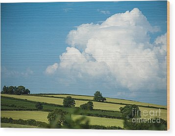 Wood Print featuring the photograph English Countryside In Summer by Jan Bickerton