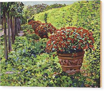 English Flower Pots Wood Print by David Lloyd Glover