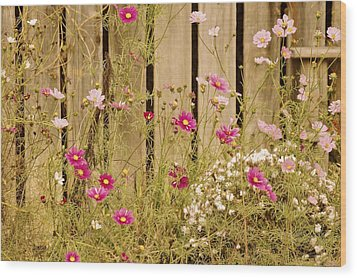 English Garden Wood Print by Susan Maxwell Schmidt