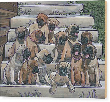 English Mastiff Puppies Wood Print