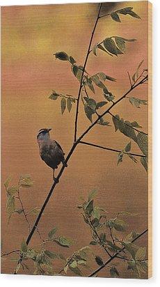 Enjoying The Breeze Wood Print