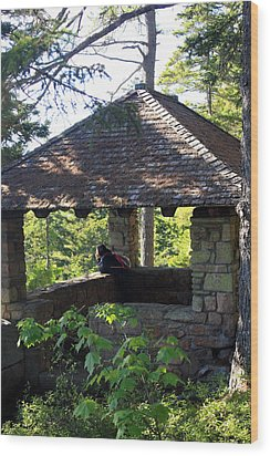 Wood Print featuring the photograph Enjoying The View by Greg DeBeck