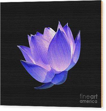 Enlightened Wood Print by Jacky Gerritsen