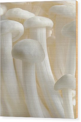 Enoki Forest  Wood Print by John Poon